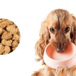 Preen Pets New Whole Ingredient Dog Food